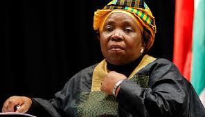 Chairperson, African Union Commission,  Dr. Nkosazana-Dlamini-Zuma