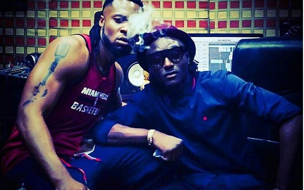 terry and flavour