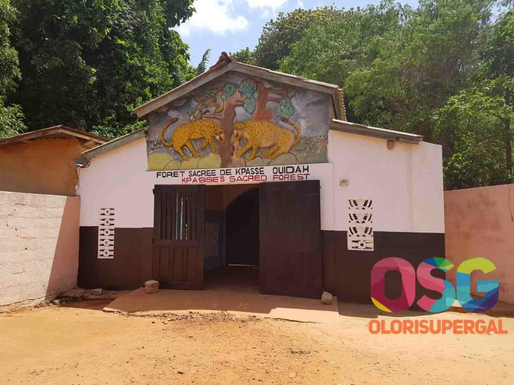 THE SACRED FOREST OUIDAH