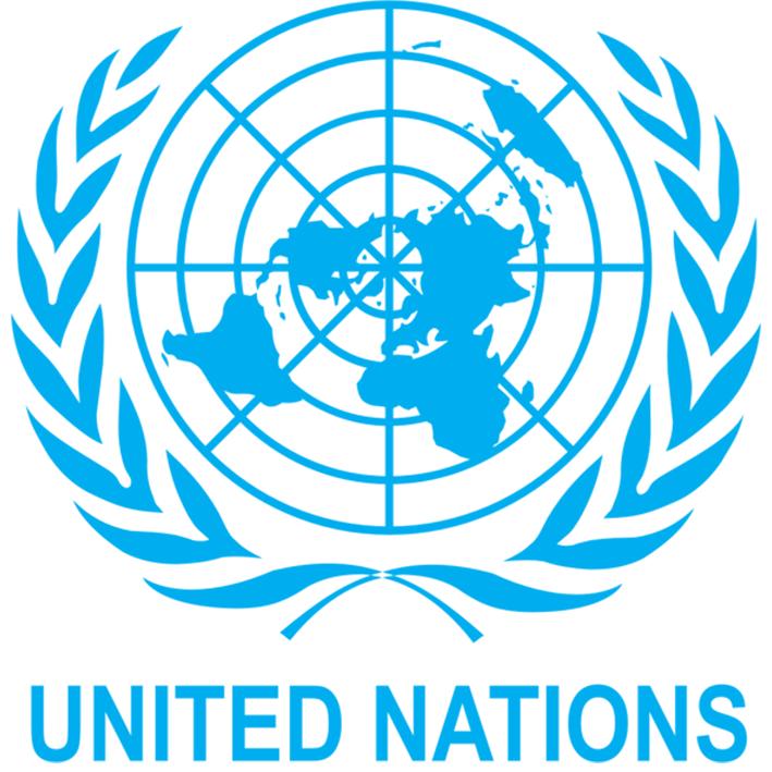 UN Confirms Boko Haram Attack On Its Facility In Borno State
