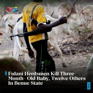 Fulani Herdsmen Kill Three-Month-Old Baby, Twelve Others In Benue State